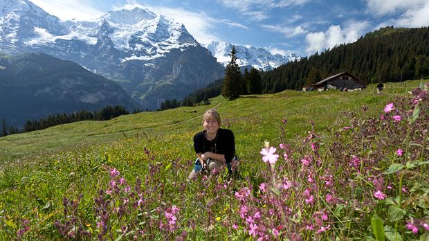 My Way® Alpine Europe in 12 Days 2020