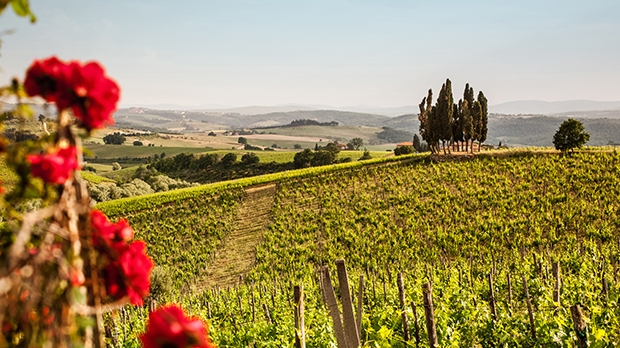 Best of Tuscany in 12 Days Tour 2022